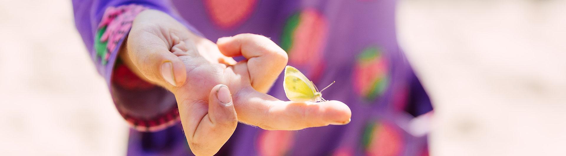 Ein Schmetterling ruht sich auf dem Finger eine Kindes aus.