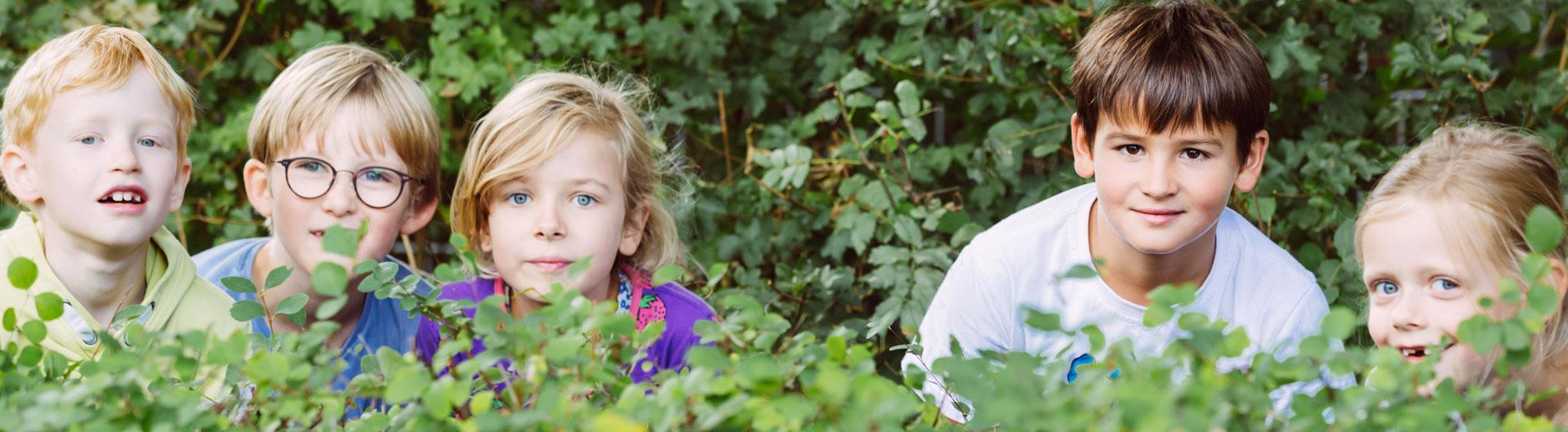 5 Kinder verstecken sich hinter einer Hecke