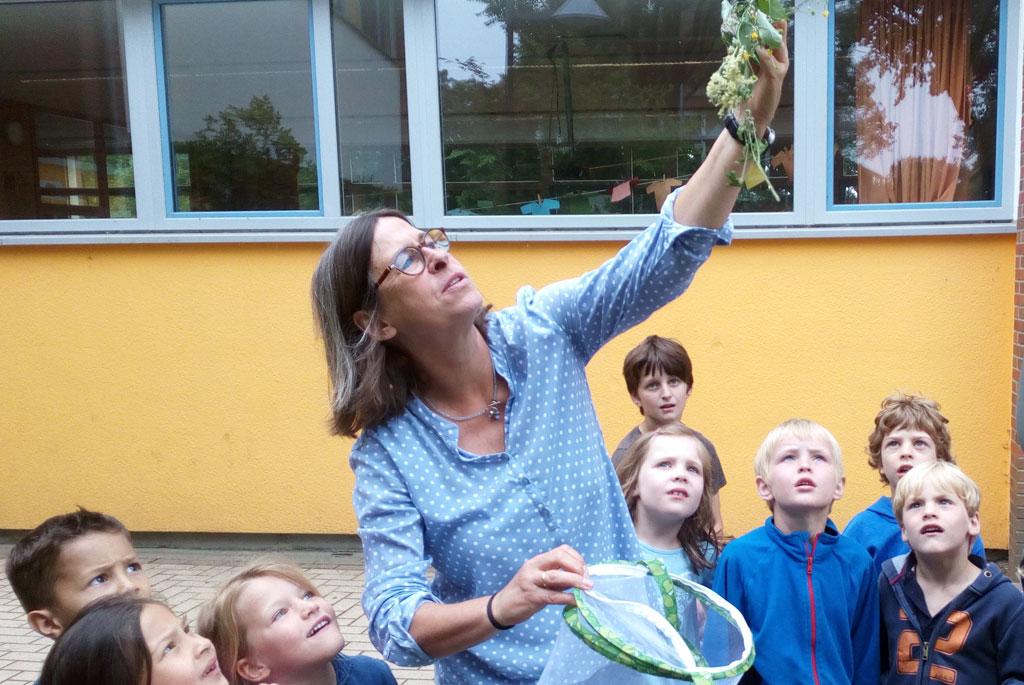 Die Vorschullehrerin zeigt einigen Vorschülern ein paar Wiesenkräuter.